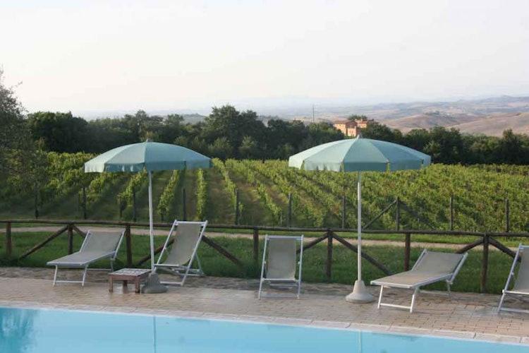 Circondati dalla vera essenza di Toscana: natura, storia e Brunello!
