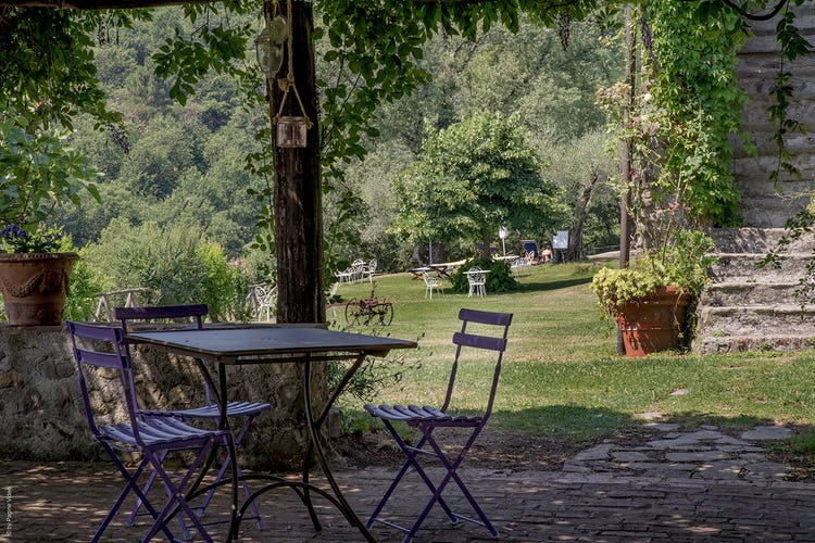 Agriturismo Ca' del Bosco -Quiet corners in Tuscany