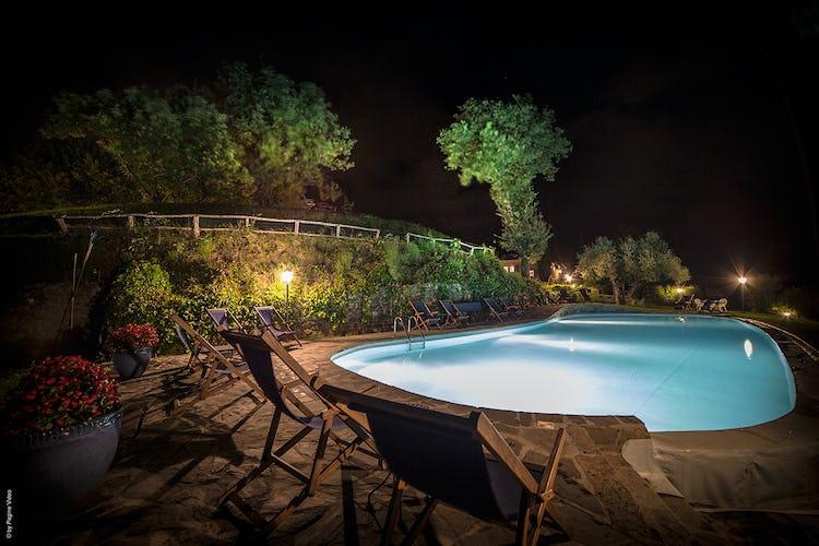Agriturismo Ca' del Bosco L'area della piscina circondata da alberi di olivo