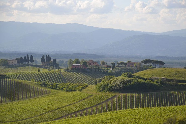 Coret in Poggio offers the true sense of Tuscany with its views