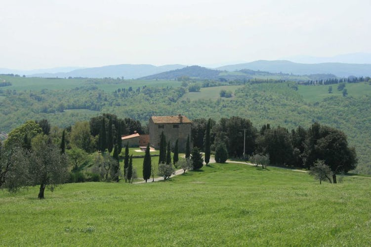 4 self catering apartments & one private cottage at Agriturismo Escaia