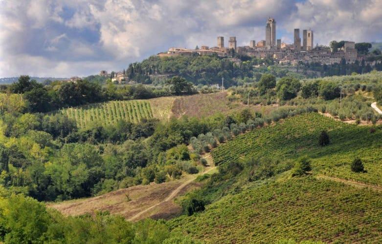 San Gimignano da  Lucciolaia Agriturismo