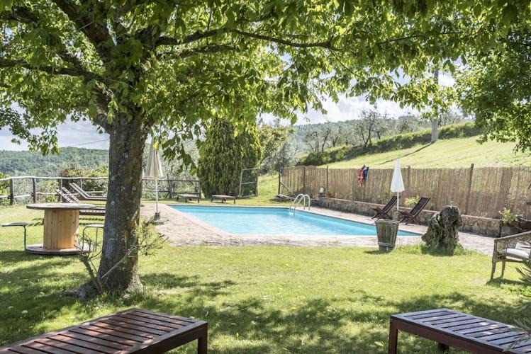 Agriturismo La Sala: piscina baciata dal sole con ombra in abbondanza