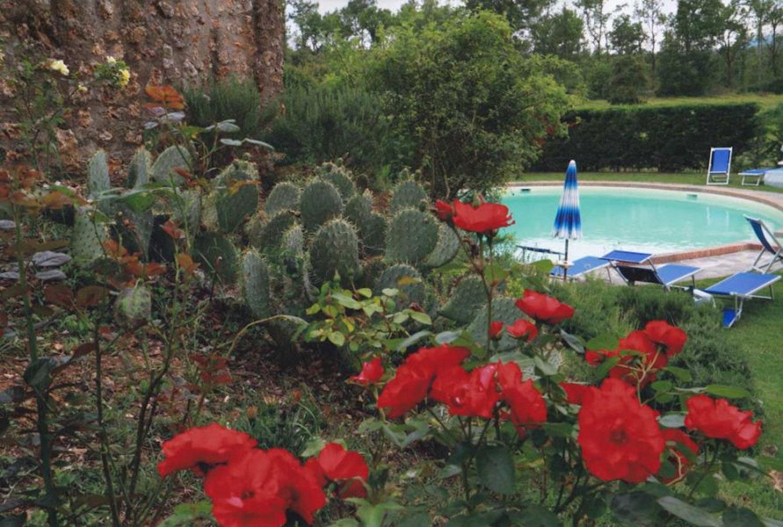 Agriturismo la selva camere ed appartamenti in stile for Piscina la selva