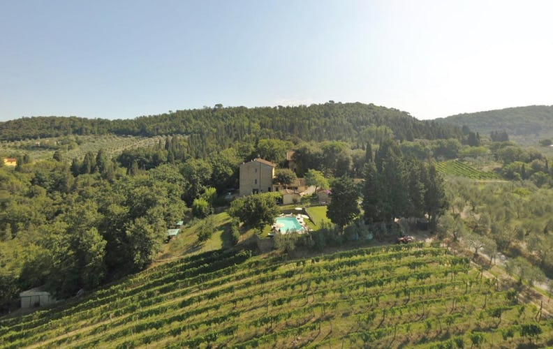 Agriturismo La Tinaia - Vineyards from above