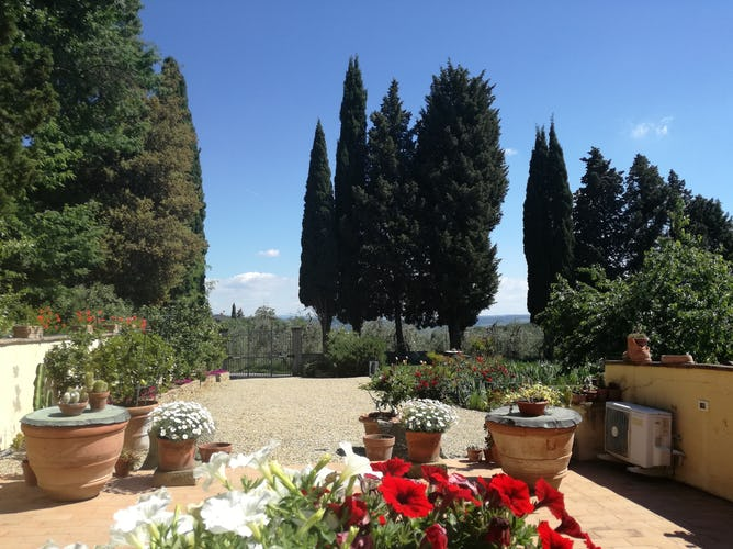 Agriturismo La Tinaia - Surrounded by cypress & olive trees