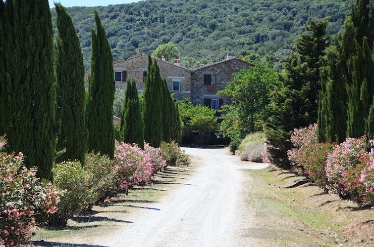 Agriturismo La Valentina - Vacation in Tuscany