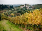 agriturismo-podere-torre-greve-in-chianti_8