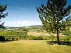 Tenuta Bossi is an oasis of Tuscan beauty