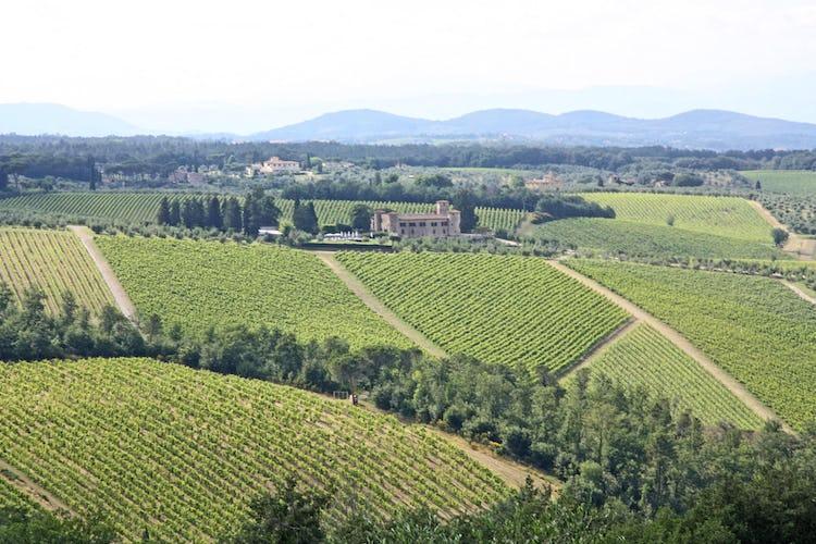 Agriturismo Vicolabate: circondato dalla campagna del Chianti, oasi di pace e tranquillità
