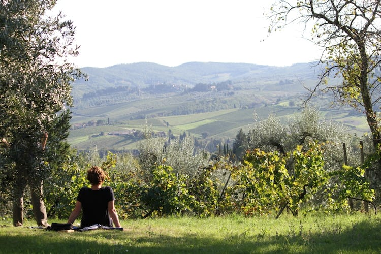 Ancora del Chianti B&B: Absolute tranquility and serenity