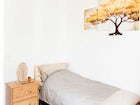 There are two single bedrooms at the bio / vegan B&B in Florence