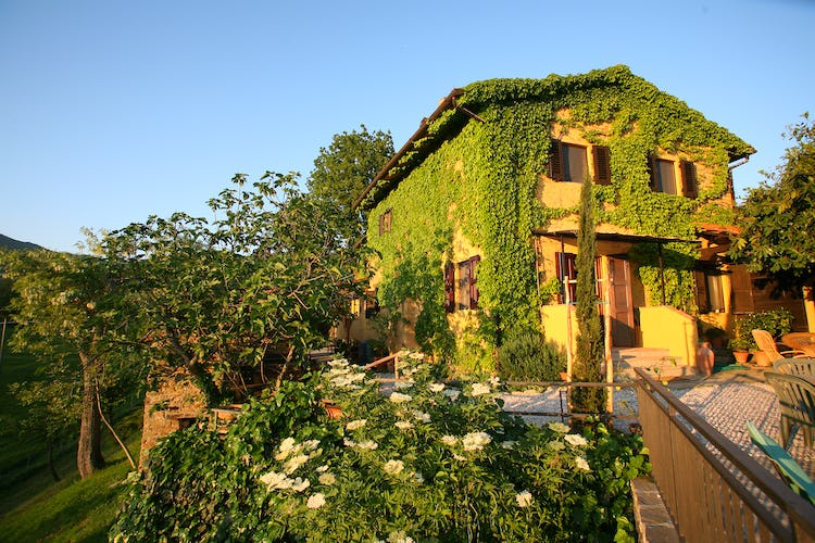 Le Due Volpi - Mugello Farmhouse