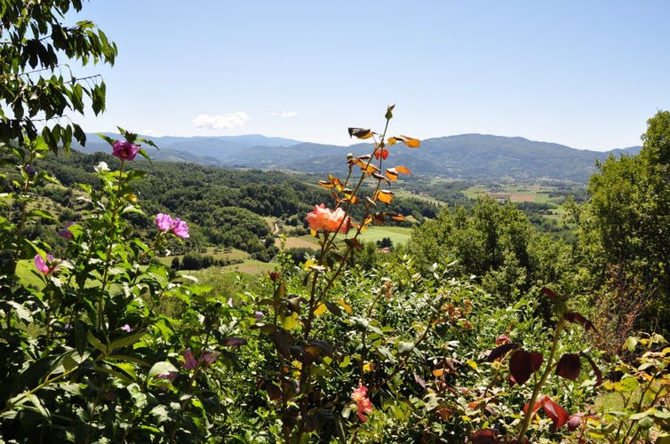 Visit the enchanting nature of Mugello by bike, by hiking or by horse