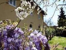 Chianti Promotion Hotel Calzaiolo