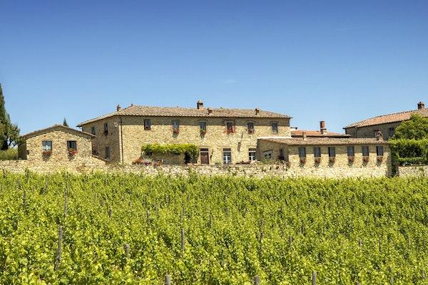 Borgo Argenina - Panoramic View in Chianti