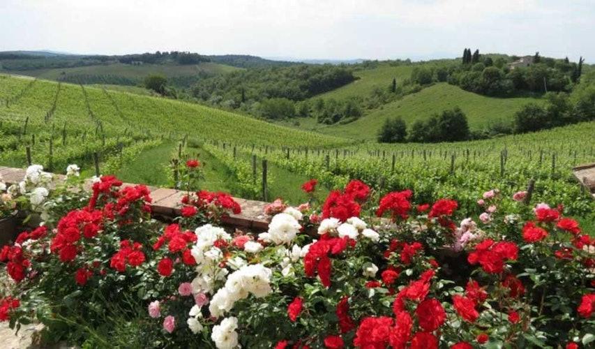 Le vedute mozzafiato sui paesaggi e le colline del Chianti