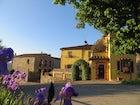 Borgo Sicelle - Chianti Flowers
