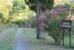 Campo del Rosario - Fiori d'estate