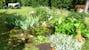 Un giardino ben curato dove poter organizzare cene all'aperto