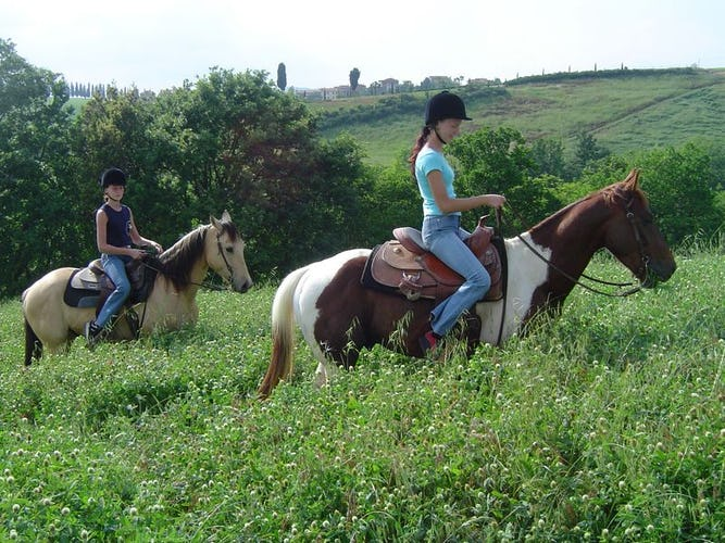 Horseback Riding Castellare di Tonda Montaione