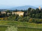 Castello Sonnino - Le Vigne