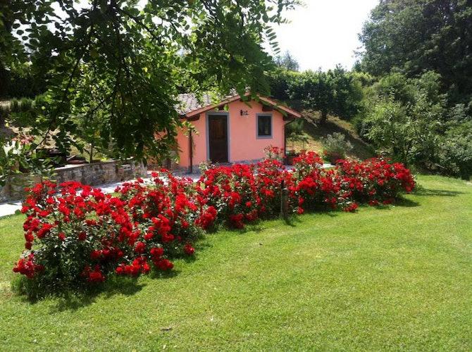 Family Suite bilocale, immersa nel profumo delle rose rosse