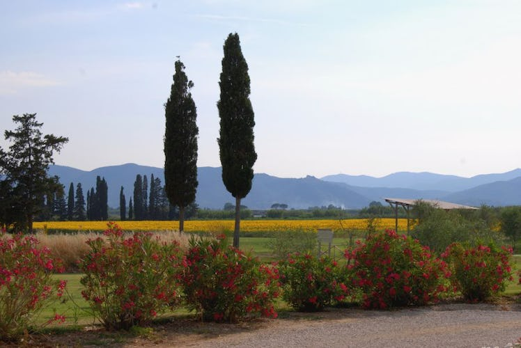 Maremma Nature at Country Resort Guadalupe