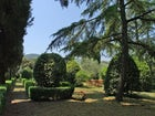 Italian garden  Poggio Arioso