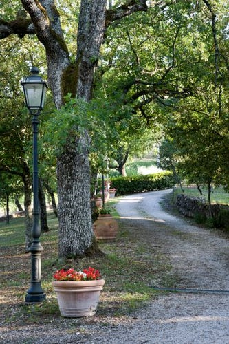 A stroll in the tranquility of the Tuscan countryside
