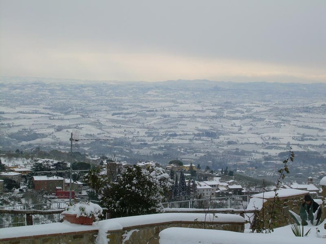 Panorama under the snow