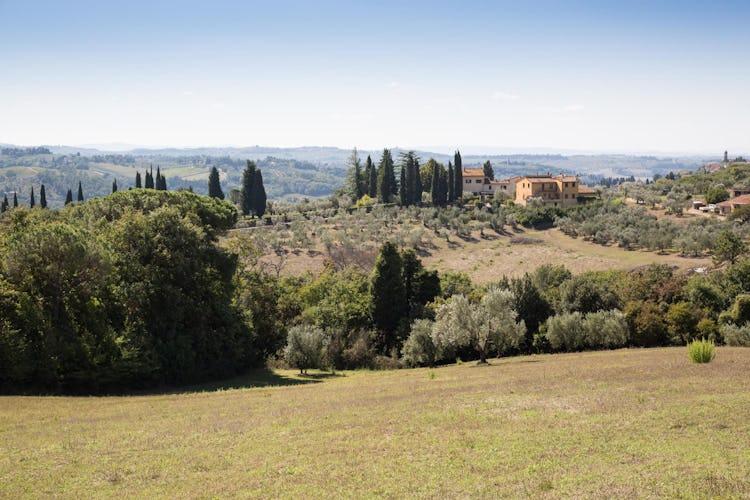 La Canigiana casa vacanze nel Chianti circondata da oliveti tipici toscani