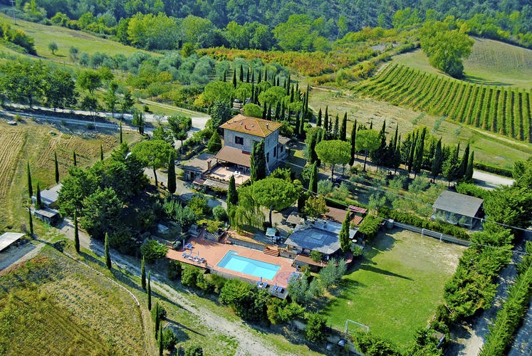Mancinella - Aerial View of Pool, Vineyards & Cypress trees