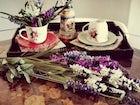 Mami Haus - Splendid Hospitality