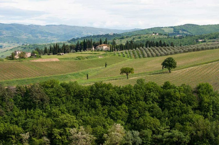 Classical Tuscan panoramas of vineyards and olive groves