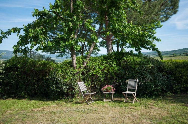 Lush green garden area surround the Montrogoli Holiday Home, with BBQ