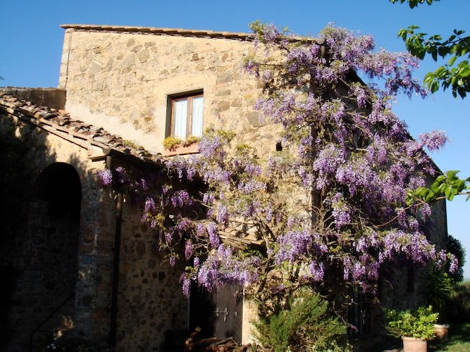 Eco-friendly accommodations to preserve the beauty of Tuscany