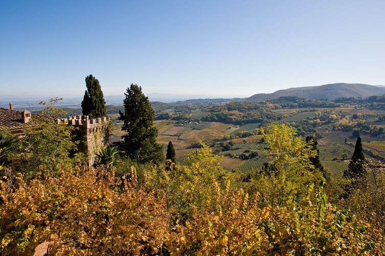 Explore the wine culture at Montepulciano when you stay at Politian