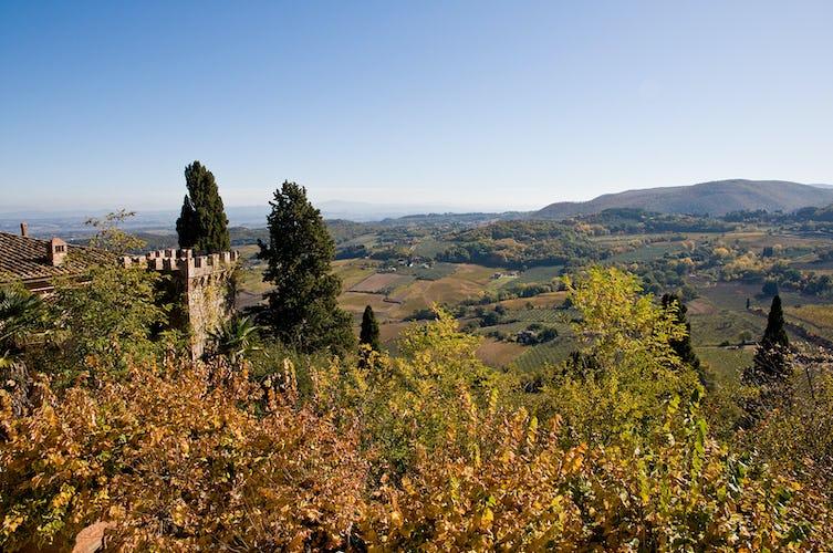 Potrete esplorare il paesaggio e la cultura vinicola di Montepulciano