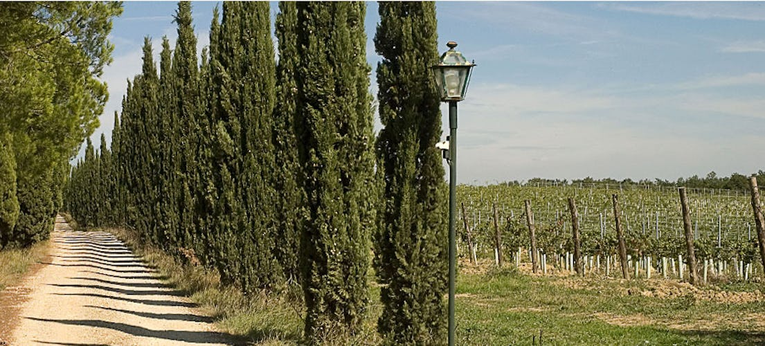 An authentic agriturismo experience at Tenuta San Vito
