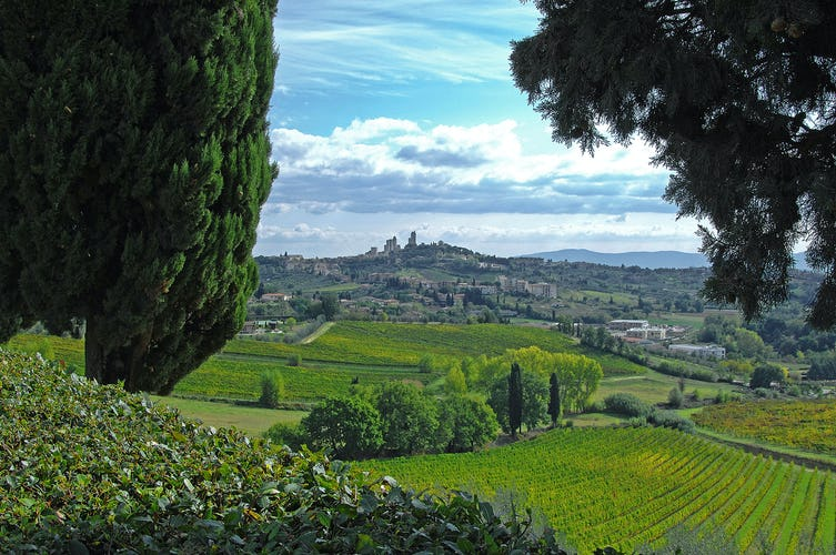 Villa Arnilù - View of San Gimignano