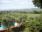 Surrounded by olive trees, the swimming pool has lounge chairs & shade