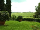 Views of the wine estate and close to a fabulous retaurant.