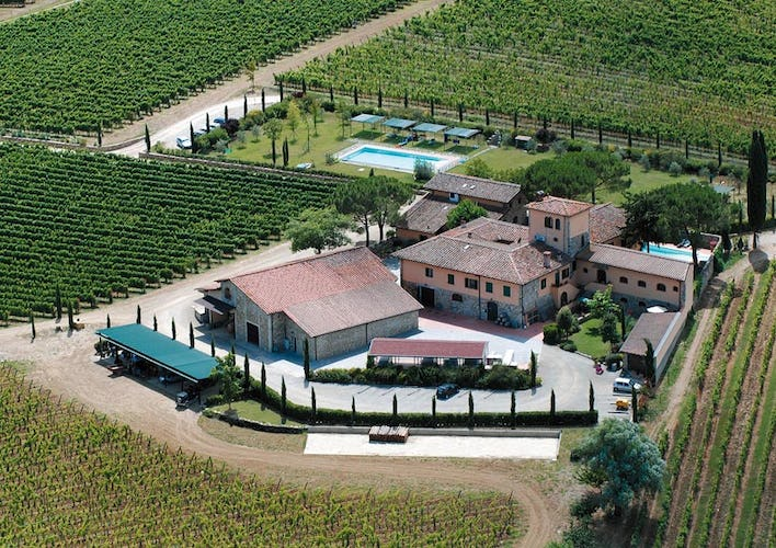 Fattoria Viticcio - Vineyards & Pool