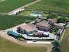 Fattoria Viticcio - Vineyards & Pool