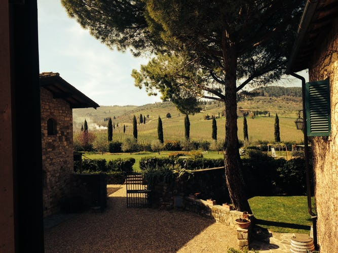Fattoria Viticcio Rental Apartments & Vineyard: Garden view