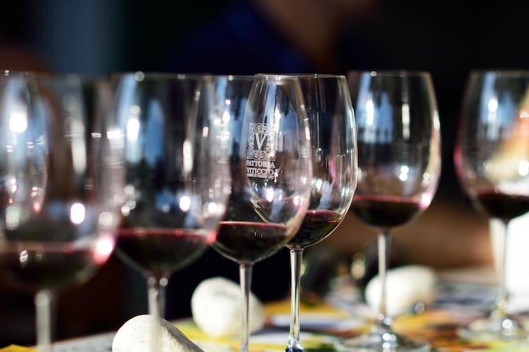 Fattoria Viticcio Rental Apartments & Vineyard: Onsite wine tasting